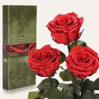 Три долгосвежие розы в подарочной упаковке FLORICH Алый Рубин (5 карат на среднем стебле)