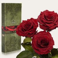Три долгосвежие розы в подарочной упаковке FLORICH Багровый Гранат (7 карат на среднем стебле)