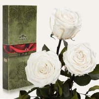 Три долгосвежие розы в подарочной упаковке FLORICH Белый Бриллиант (5 карат на коротком стебле)