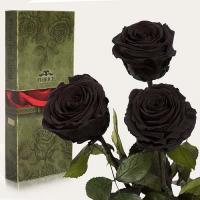 Три долгосвежие розы в подарочной упаковке FLORICH Черный Бриллиант (5 карат на коротком стебле)