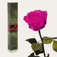 Долгосвежая роза в подарочной упаковке FLORICH Малиновый Родолит (5 карат на среднем стебле)