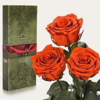 Три долгосвежие розы в подарочной упаковке FLORICH Огненный Янтарь (7 карат на среднем стебле)
