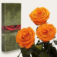Три долгосвежие розы в подарочной упаковке FLORICH Оранжевый Цитрин (5 карат на коротком стебле)