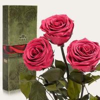 Три долгосвежие розы в подарочной упаковке FLORICH Розовый Коралл (5 карат на коротком стебле)