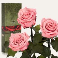 Три долгосвежие розы в подарочной упаковке FLORICH Розовый Кварц (7 карат на среднем стебле)