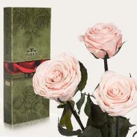 Три долгосвежие розы в подарочной упаковке FLORICH Розовый Жемчуг (7 карат на среднем стебле)