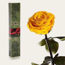 Долгосвежая роза в подарочной упаковке FLORICH Солнечный Цитрин (5 карат на коротком стебле)