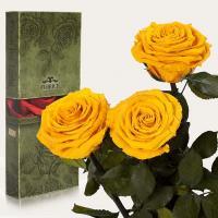 Три долгосвежие розы в подарочной упаковке FLORICH Солнечный Цитрин (7 карат на коротком стебле)