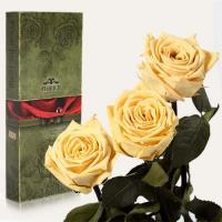 Три долгосвежие розы в подарочной упаковке FLORICH Желтый Топаз (7 карат на коротком стебле)