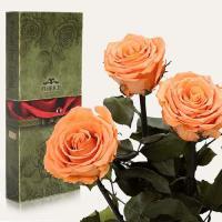 Три долгосвежие розы в подарочной упаковке FLORICH Золотистый Хризоберилл (7 карат на среднем стебле)